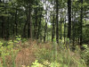 Photo of Lot 149 Mountaineer Trl, Lot # 149, Sevierville, TN 37862 (MLS # 1122222)