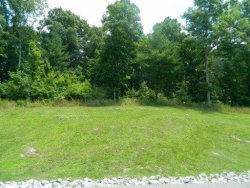 Photo of New Hope Road Ext Rd, Lot # 246, Rockwood, TN 37854 (MLS # 1134579)