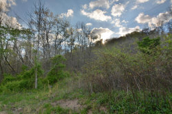 Photo of L-9 Wolf Peak Lane, Lot # 9, Heiskell, TN 37754 (MLS # 976659)