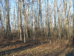 Photo of Renegade Mountain Pkwy, Lot # 321, Crab Orchard, TN 37723 (MLS # 995175)