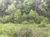 Photo of Tract 6 Wilhite Road, Sevierville, TN 37876 (MLS # 999991)