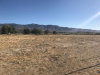 Photo of Mesa Road, Lucerne Valley, CA 92356 (MLS # 486730)