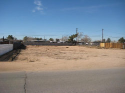Photo of Algonquin Road, Apple Valley, CA 92308 (MLS # 487052)