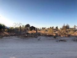 Photo of 11624 White Road, Phelan, CA 92371 (MLS # 493235)