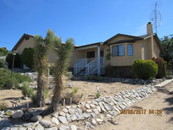 Photo of 9824 Mountain Road, Pinon Hills, CA 92372 (MLS # 485672)