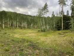 Photo of TBD Elk Run Road, Telluride, CO 81435 (MLS # 38685)