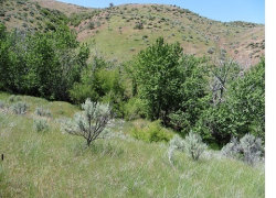 Photo of Lot #10 Shoemaker, Horseshoe Bend, ID 83629 (MLS # 98650727)