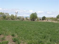Photo of 113 Nw 4th St, Fruitland, ID 83619 (MLS # 98668287)