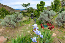 Photo of 375 Old Emmett, Horseshoe Bend, ID 83629 (MLS # 98695858)
