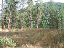 Photo of Lot 15 Valley Of The Pines Sub, Boise, ID 83716 (MLS # 98710496)
