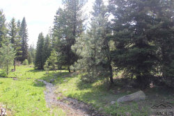 Photo of 1925 Bear Basin, McCall, ID 83638 (MLS # 98716485)