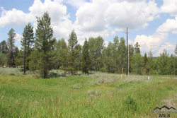 Photo of 109 Moon Dr., McCall, ID 83638 (MLS # 98717781)