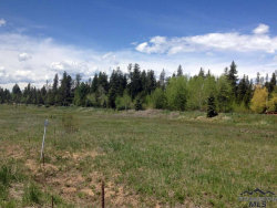Photo of 1025 Kaitlyn Loop, McCall, ID 83638 (MLS # 98718135)