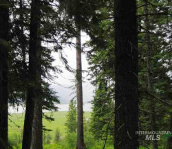 Photo of 1777 Finch Trail, Donnelly, ID 83615 (MLS # 98723069)