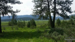 Photo of Lot 14 Wilderness Lake Rd, High Valley, ID 83611 (MLS # 98723641)