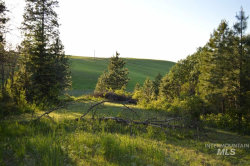 Photo of 000 Paradise Ridge Rd, Moscow, ID 83843 (MLS # 98747973)