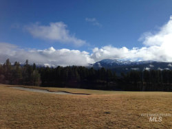 Photo of 231 Cold Creek Court, McCall, ID 83638 (MLS # 98757226)