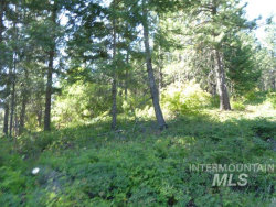 Photo of Nna Snowberry Lane Lot 11, St. Maries, ID 83861 (MLS # 98758643)