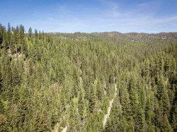 Photo of Tbd (13.63 Ac) Warm Lake Rd, Cascade, ID 83611 (MLS # 98765524)