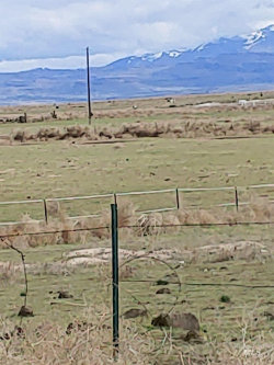 Photo of Tbd Grand View Highway, Mountain Home, ID 83647 (MLS # 98772269)