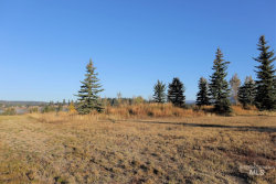 Photo of Lot 12 River Ranch Road, McCall, ID 83638 (MLS # 98784190)