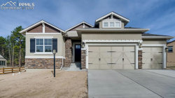 Photo of 1446 Catnap Lane, Monument, CO 80132 (MLS # 4151397)