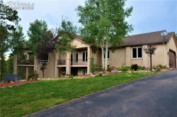 Photo of 1136 Carnahan Court, Monument, CO 80132 (MLS # 4173706)