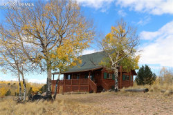 Photo of 2772 County 863 Road, Victor, CO 80860 (MLS # 4250777)
