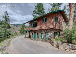 Photo of 10135 Wildwood Road, Cascade, CO 80809 (MLS # 4264103)