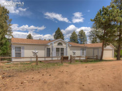 Photo of 133 Donzi Trail, Florissant, CO 80816 (MLS # 4294919)