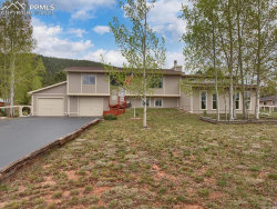 Tiny photo for 989 Forest Edge Road, Woodland Park, CO 80863 (MLS # 4343091)