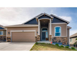 Photo of 815 Tailings Drive, Monument, CO 80132 (MLS # 4351351)