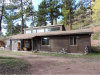 Photo of 1030 W Highway 24 Highway, Woodland Park, CO 80863 (MLS # 4372259)