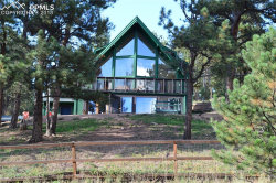 Photo of 145 Valley Lane, Woodland Park, CO 80863 (MLS # 4626901)