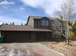 Photo of 848 E Northwoods Drive, Woodland Park, CO 80863 (MLS # 4699282)
