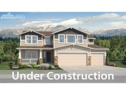 Photo of 3101 Lakefront Drive, Monument, CO 80132 (MLS # 4777423)