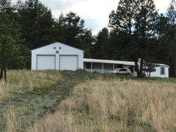 Photo of 30 Chinook Lane, Florissant, CO 80816 (MLS # 4848947)