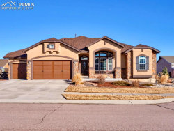 Photo of 7119 Spring Linden Court, Colorado Springs, CO 80927 (MLS # 4862604)
