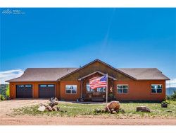 Photo of 198 Chateau Vista Street, Florissant, CO 80816 (MLS # 4931762)