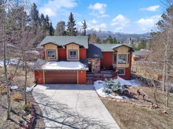 Photo of 1231 Telemark Drive, Woodland Park, CO 80863 (MLS # 4955047)