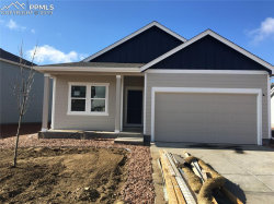 Photo of 9539 Clatsop Drive, Colorado Springs, CO 80925 (MLS # 5036929)