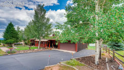 Photo of 755 W Northwoods Drive, Woodland Park, CO 80863 (MLS # 5274299)