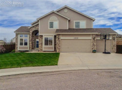 Photo of 13735 Sand Cherry Place, Colorado Springs, CO 80921 (MLS # 5542954)