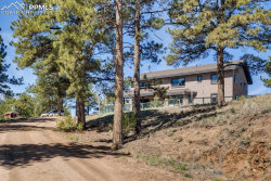 Photo of 483 Pikes Peak Drive, Florissant, CO 80816 (MLS # 5624313)