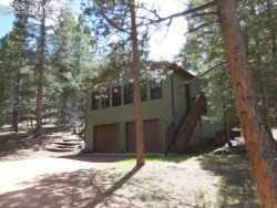 Photo of 1309 W Browning Avenue, Woodland Park, CO 80863 (MLS # 5681628)