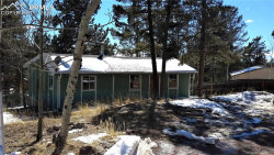 Photo of 985 Blossom Road, Woodland Park, CO 80863 (MLS # 5932434)