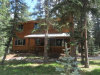 Photo of 4076 Omer Lane, Divide, CO 80814 (MLS # 5975639)