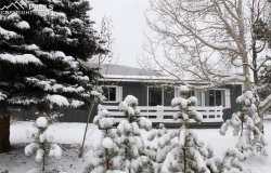 Photo of 909 N Park Drive, Woodland Park, CO 80863 (MLS # 6056162)