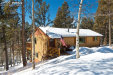 Photo of 15 Rainbow Lane, Divide, CO 80814 (MLS # 6103851)