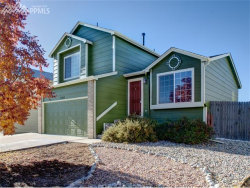 Photo of 7582 Old Spec Road, Peyton, CO 80831 (MLS # 6239994)